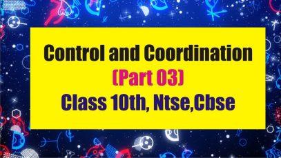 control-coordination-cbse-10-class
