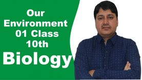 Our Environment Class 10th Biology by Dr. Sanjit Phogat- Part 1