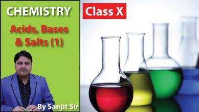 X Class Chemistry: Acids, Bases and Salts | Organic, Inorganic Acids